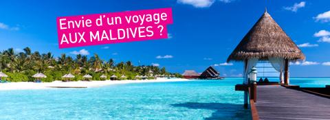 Gazelles Destination Agence De Voyage Au Maroc